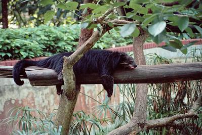 Zoo4-002.jpg