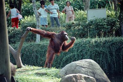 Zoo4-038.jpg