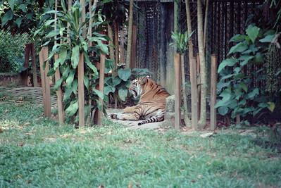 Zoo3-015.jpg