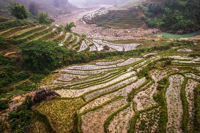 Rice Layers