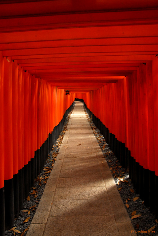 Thousands of Torii at Fushimi Inari Taisha Shrine 伏見稲荷大社, Fushimi-ku, Kyoto, Japan
