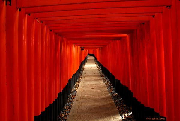Thousands of Torii at Fushimi Inari Taisha Shrine 伏見稲荷大社, Fushimi-ku, Kyoto, Japan