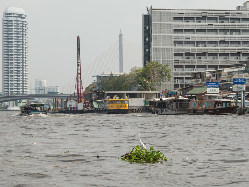 Bangkok-9312
