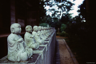 Line up of Buddha statues, in Kyoto, Japan
