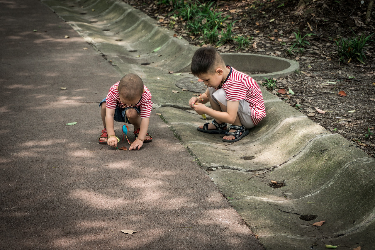 Young brothers play in the shade at Century Park in Shanghai