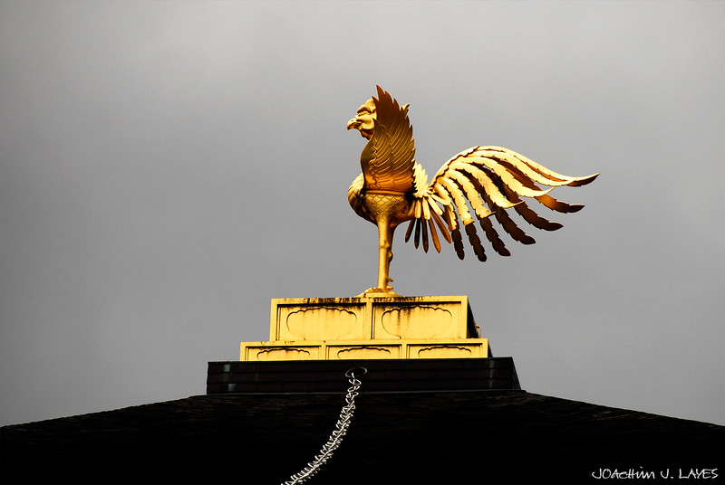 The Bronze Phoenix of the Golden Pavilion, Kinkaku-ji Temple