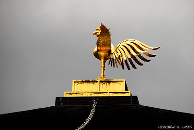 The Bronze Phoenix of the Golden Pavilion, Kinkaku-ji Temple