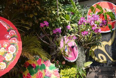 Umbrella garden, Bo Sang Umbrella Festival, Chiang Mai, Thailand