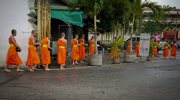 Monks return at sunrise from their alms to Wat Phra Singh in Chiang Mai, Thailand