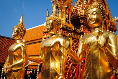 Golden Buddha statues at Doi Suthep temple in Chiang Mai, Thailand.