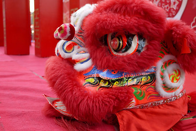 Dragon head awaiting setup at the Chinese New Year festivities in Chiang Mai, Thailand.