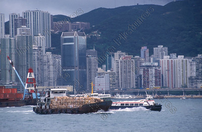 HongKong harbour,haven,port