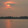 Kratie-River Dolphins