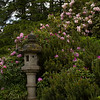 Tall Pagoda with Pink Rhodys