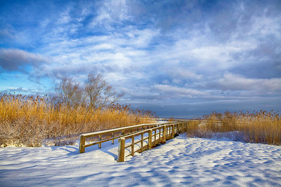 February at Cedar Beach Marina.  I find the beach beautiful even during the winter.
