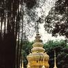 Temple Dai - 傣寺庙