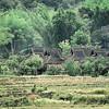 Village Dai - 傣仂