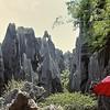 Forêt de pierres de Shilin - 石林