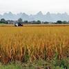 Guangxi - Un fréquent horizon de pics - 广西