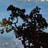 Himalaya - Gauri Shankar (7.134m) et Melungtse (7.181m) - हिमालय