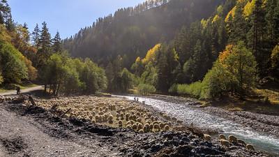 Following Alazani River
