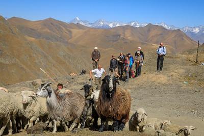 goats made it: Abano Pass