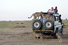 Cheetah_Family_Vehicle_Mara_Kenya_Asilia_20150016