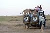 Cheetah_Family_Vehicle_Mara_Kenya_Asilia_20150017