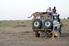Cheetah_Family_Vehicle_Mara_Kenya_Asilia_20150014
