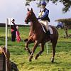 137_horse trials