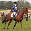 049_horse trials
