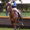 320_horse trials