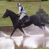 177_horse trials