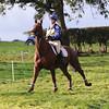 135_horse trials