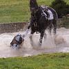 216_horse trials