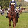 042_horse trials