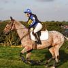 276_horse trials