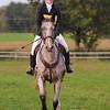 224_horse trials