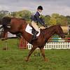 053_horse trials