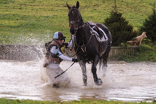 214_horse trials