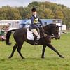 020_horse trials