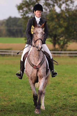 228_horse trials