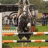 002_horse trials