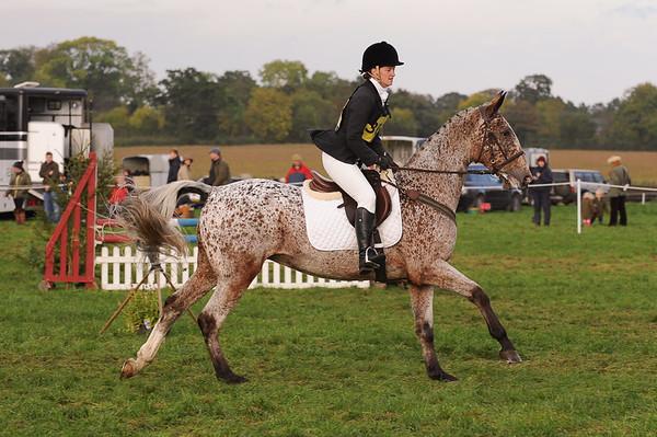 244_horse trials