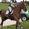 344_horse trials