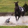 217_horse trials
