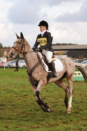 251_horse trials