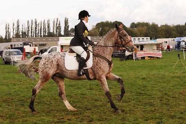 265_horse trials