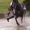 212_horse trials