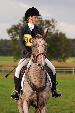 229_horse trials